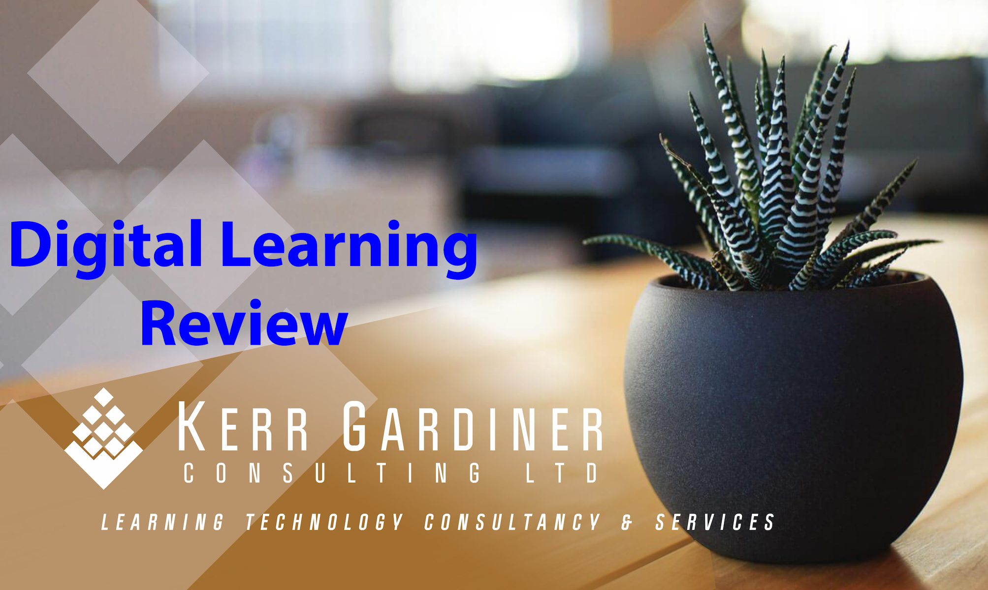 Digital Learning Review